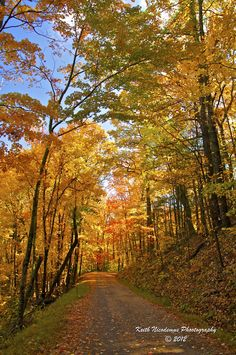 Rich Mountain Road in autumn (Tennessee, Great Smoky Mountains National Park) by Keith Nicodemus Photography