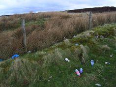 plastic bottles national park pollution
