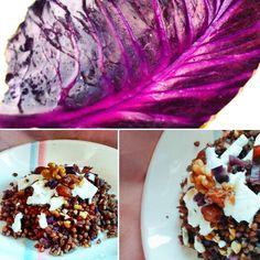 Cabbage, Drink, Vegetables, Food, Beverage, Essen, Cabbages, Vegetable Recipes, Meals