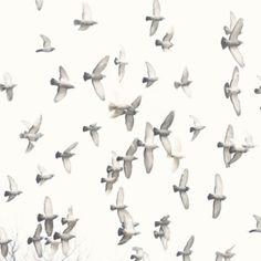 fly fly away.