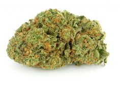"""Cherry Pie Strain Review  A beautiful mix of the legendary Grand Daddy Purple strain and Durban Poison. Cherry Pie is renowned for its deep sweet cherry taste and its knockout high. Wonderfully calming effects with a hint of happy giggles!  [button type=""""link"""" link=""""http://www.bitcoinseedstore.com/bulk-cannabis-seeds """" size=""""btn-lg"""" variation=""""btn-danger"""" block=""""btn-block"""" target=""""blank""""]Bulk Cannabis Seeds[/button]   …"""
