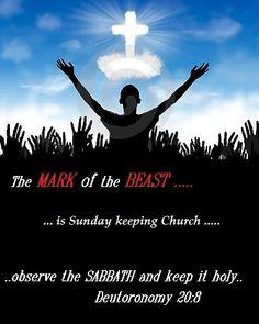 4th Commandment, Matthew 24, The Son Of Man, Sabbath, Worship, Student, Day