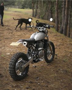 "elegant-apparatus: ""Honda Scrambler by @garaje57_pasqualemotors captured by @mboteroph "" fresh*"