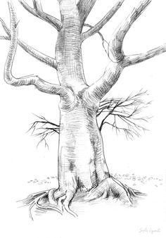 Dibujos de árboles / Drawings of trees on Behance