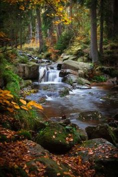 A river runs through it by aw-landscapes on DeviantArt - Landscape Photography Landscape Photos, Landscape Art, Landscape Paintings, Landscape Photography, Nature Photography, Forest Landscape, Beautiful Waterfalls, Beautiful Landscapes, Beautiful Places