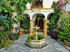 One day in Cordoba hidden patio