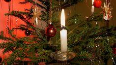 Joulukuusi. Kuva: Arja Lento/Yle
