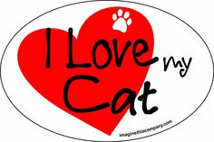 Imagine This 4-Inch by 6-Inch Car Magnet Heart Oval, Cat ** Want additional info? Click on the image.
