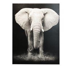 Lerretsbilde Elefant