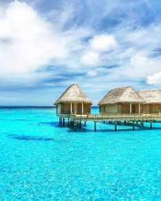 Ultimate Travel Guide: Why Visit Maldives Now New Travel, Ultimate Travel, Travel Tips, Vacation Places, Vacation Spots, Vacations, Maldives Destinations, Maldives Holidays, Visit Maldives