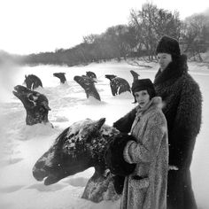 In winter of 1926, horses escaped from stables during a fire and jumped into an ice-clogged river; where they were trapped and are frozen in the ice ref. Winnipeg in Manitoba, Canada 1926