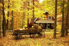 Autumn Scenery Wallpaper With Pumpkins Images & Pictures Old Wagons, Autumn Scenes, Scenery Wallpaper, Autumn Inspiration, Happy Fall, I Fall, Fall Season, Fall Decor, Pictures