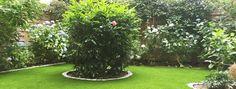 Unsere Kunstrasen für den Garten -  schön, pflegeleicht und immer grün