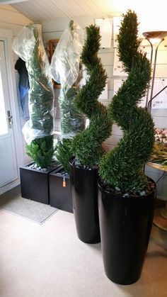 Fake Front Porch Plants