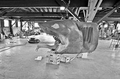 Pics I'd never seen from the set of JAWS (my favorite movie).  Love all things JAWS.