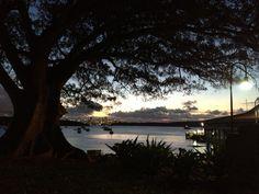 Magical evening Watsons Bay Park Sydney Sydney, Celestial, Sunset, Park, Photography, Outdoor, Outdoors, Photograph, Parks