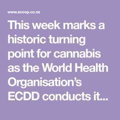 This week marks a historic turning point for cannabis as the World Health Organisation's ECDD conducts its first ever review of the scheduling of cannabis. Both as a flower and is a concentrated resin. This has never been done before and in fact the scheduling ...