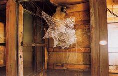 Web lace.