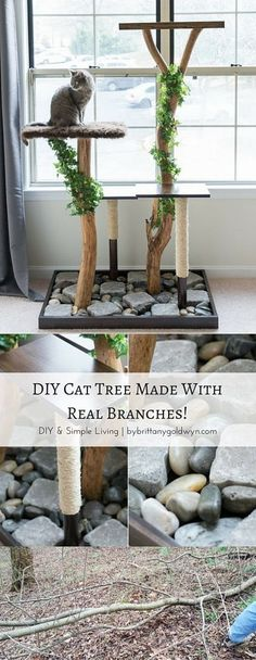 See how I made this DIY cat tree using real tree branches for only $75.12--modeled after an $800 tree! | make a homemade cat tree, make a cat tree with real branches, DIY cat tree
