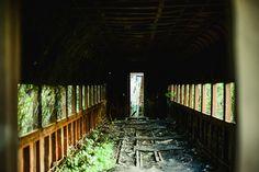 O trem esquecido   por victória kubiaki