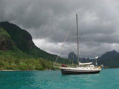 Pracht van een eiland en snorkelen tussen pijlstaartroggen
