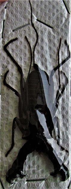 Lot of 10 Large Whip Vinegar Scorpion Hypocnoctus rangunensis FAST SHIP FROM USA