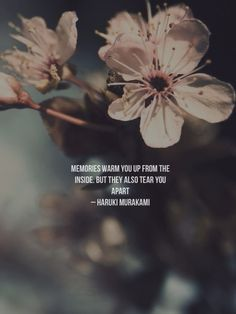Memories warm you up from the inside. But they also tear you apart – Haruki Murakami