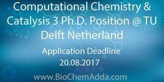 Computational Chemistry & Catalysis 3Ph.D. Position @ TU Delft Netherland
