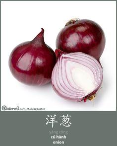 洋葱 - Yángcōng - củ hành - onion