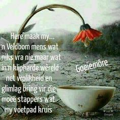 Greetings For The Day, Evening Greetings, Good Morning Wishes, Day Wishes, Afrikaanse Quotes, Goeie Nag, Goeie More, Scripture Verses, Bible