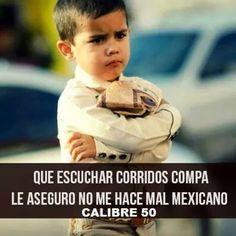 Escuchar corridos compa le aseguro no me hace un mal mexicano ...