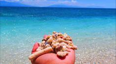 Masasa Beach in 20 Seconds