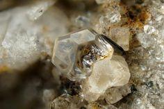 Fluorapatite. Cavradi, Tujetsch, Graubünden, Schweiz Taille=2 mm Copyright Stephan Wolfsried