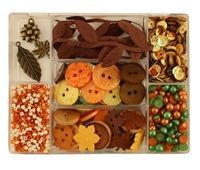 Autumn Afternoon embellishment kit by 28 Lilac Lane for Buttons Galore, with buttons, sequins, trim, charms, and pearls - everything you need for embellishing beautiful fall craft projects | http://ButtonsGaloreAndMore.com