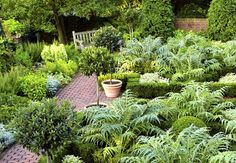 Landscaping Your Garden With Woody Plants