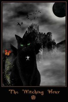 The Witching Hour, black cat