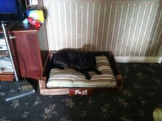 black jade crafts: pet dog bed personalised wood rustic shabby chic comfortable easy access for old dogs black Labrador Rustic Shabby Chic, Black Labrador, Old Dogs, Dog Bed, Jade, Toddler Bed, Woodworking, Cool Stuff, Pets
