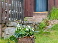 Trädgård - Seglora vid sjön Uppsalen