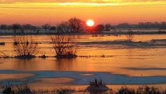 Welches Winterbild ist das Schönste? - Bilder und Fotos aus Bremen - WESER-KURIER