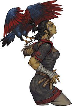 elf half elf hawk animal companion beastmaster druid