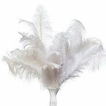 Feathers in a Vase Zgallerie