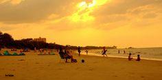 https://flic.kr/p/QvSfZg | DSC_3512.NEF | Praia do chapéu virado,PA,Brasil.