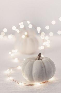 Citrouille et lumières en blanc