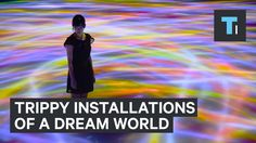 """DMM.Planets Art by teamLab"" is an interactive art installation exhibition created by DMM and teamLab. This exhibition features art meeting the latest techno..."