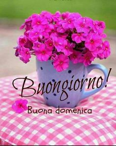 Happy Weekend, Happy Sunday, Good Morning Coffee, Flowers For You, Friends In Love, Diy And Crafts, Like4like, How Are You Feeling, Make It Yourself