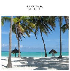 ZANZIBAR - the most beautiful beaches & one of my most favourite places in the world