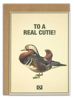 """""""To a real cutie!"""". #messageearth #sustainable #greetingcards #sustainability #eco #design #ecodesign #vintage #cards #peculiar"""