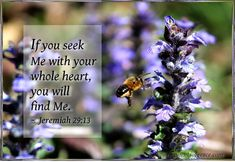 """If you seek Me with your whole heart, you will find Me."" ~ Jeremiah 29:13 https://www.facebook.com/ornamentsofgracebyDebbiePickering https://twitter.com/Deb_Pickering"