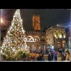 L'albero di Natale in Piazza Maggiore - Instagram by djpalmis