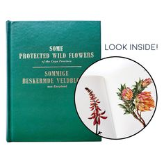 Vintage witchy BOOK - Some Protected Wild Flowers of the Cape Province - bilingual English / Afrikaans herbology witch's garden Green Witch Witch's Garden, Celebration Box, Witch Aesthetic, Afrikaans, Little Books, Daughters, Wild Flowers, Cape, English